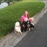 Dog Walker, Pet Sitter in Hendersonville