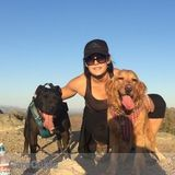 Dog Walker, Pet Sitter in Phoenix