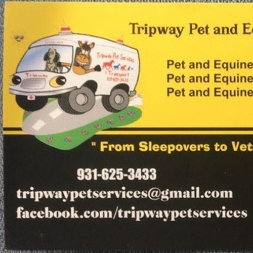 Pet Care Provider Brooke Rozell's Profile Picture