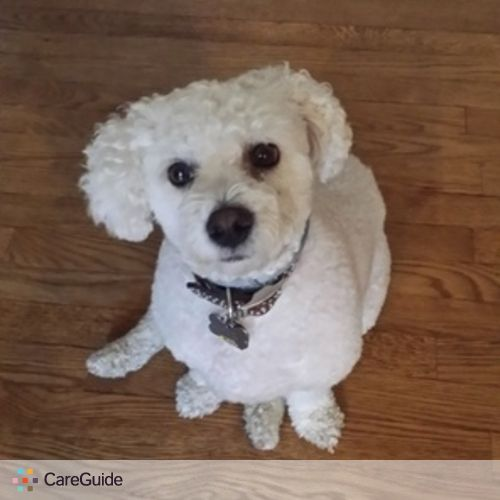 Pet Care Provider John S's Profile Picture