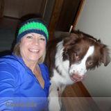 Dog Walker, Pet Sitter in Lake Stevens