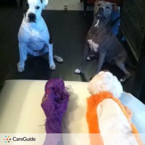 Pet Care Provider Jaz Hanks's Profile Picture