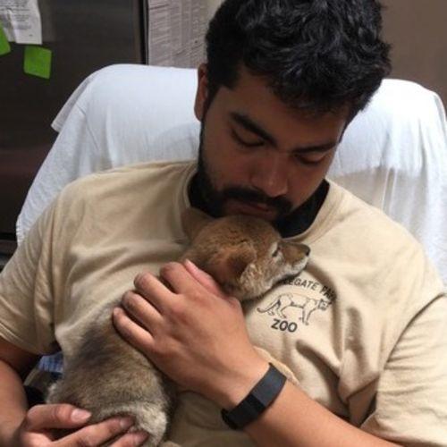 Pet Care Provider Eric Hernandez Gallery Image 1