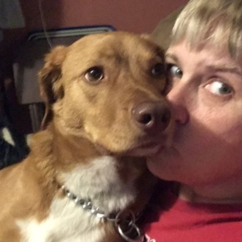 Pet Care Job Ann J's Profile Picture