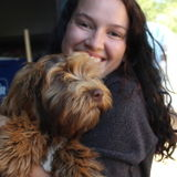 I'm Ophelia Sutter, I am avaible for house sitting in Ashland and overnight care for animals.