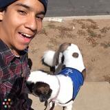 Dog Walker, Pet Sitter in El Cajon