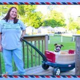 Dog Walker, Pet Sitter in Clarksville