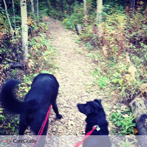 Pet Care Provider Andrea Z's Profile Picture