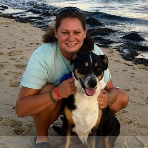 Pet Care Provider Kelly Lowry's Profile Picture
