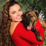 Petsitter/ dog walker with 3+ years experience at an animal shelter, dog groomer/boarding center, and 1-1 client relations