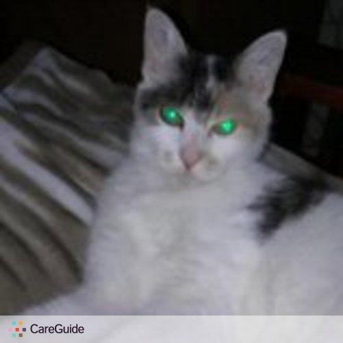 Pet Care Provider Niki Knight's Profile Picture