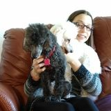 Flexible and loving Animal Caregiver in Gloucester