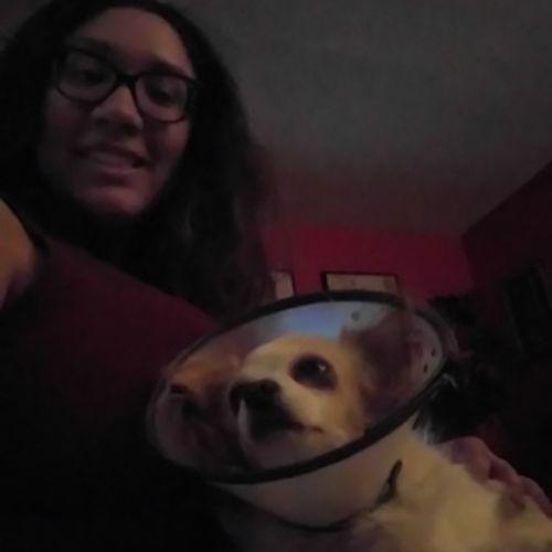 Pet Care Provider Jasmine Macias Gallery Image 1