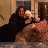 Dog Walker, Pet Sitter in Norristown