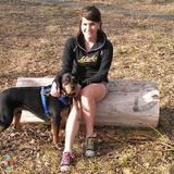 Dog Walker, Pet Sitter in Yakima