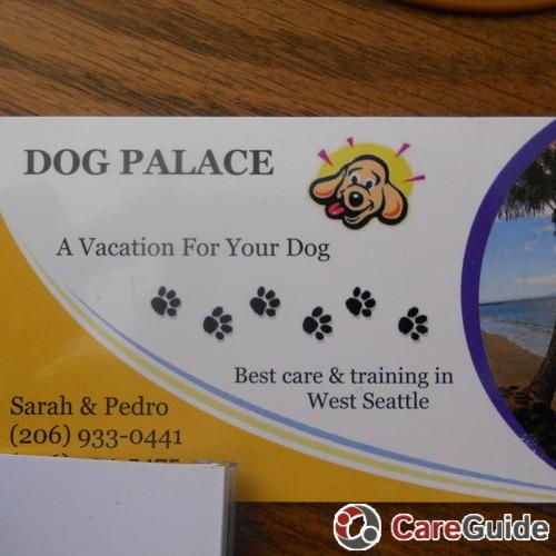 Pet Care Provider Sarah Barracco's Profile Picture