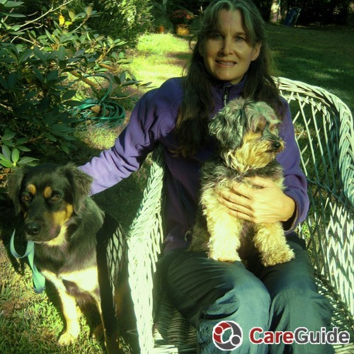 Pet Care Provider Carla Walsh's Profile Picture