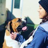Lakewood Dog Handler/Walker Looking For Work