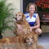 Dog Walker, Pet Sitter in Naples