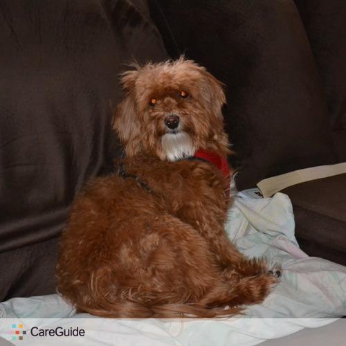 Pet Care Provider Doug L's Profile Picture