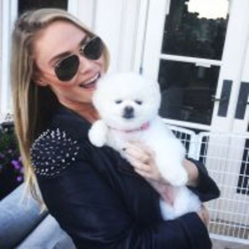 Pet Care Provider Kayla S's Profile Picture