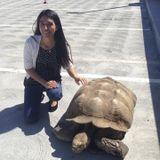 Pet Care Job in Fair Oaks, California