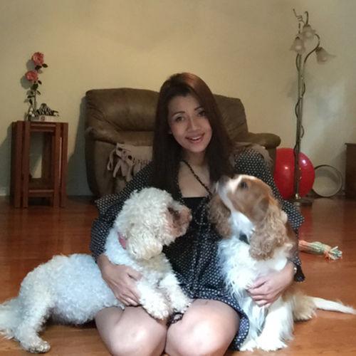Pet Care Provider Puncha Pin's Profile Picture