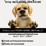 Dog Walker, Pet Sitter, Kennel in Skokie
