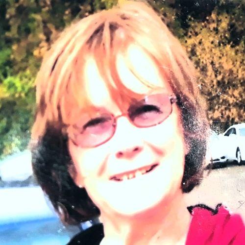 Pet Care Provider Kate M's Profile Picture