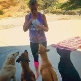 Seeking a Pet Sitter Job in San Bernardino