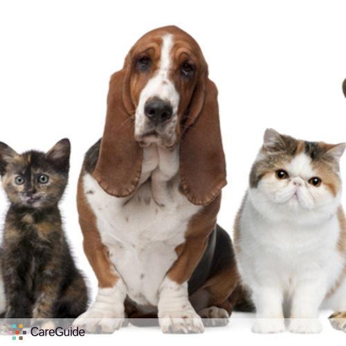 Pet Care Provider Paul K.'s Profile Picture