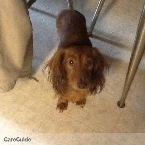 Pet Care Provider Felicia Gjerde's Profile Picture