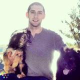 Dog Walker, Pet Sitter in Waltham