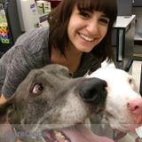 Dog Walker, Pet Sitter in Auburn