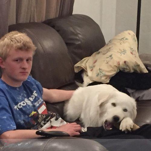 Pet Care Provider Jonathan McDonald's Profile Picture