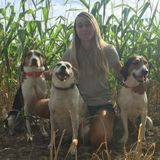 Certified Dog Trainer/Walker/Sitter - Offering ADVENTURE HIKES & Personalized Pet Care!