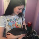 Seeking a Skilled Pet Sitter who has experience with rabbits in Milwaukie, Oregon