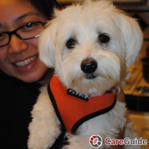 Pet Care Provider Rose Zhao's Profile Picture