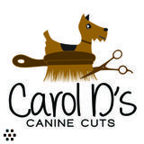 Pet Care Provider in Camp Hill