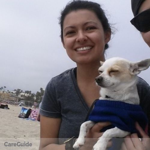 reliable animal caregiver   dog walker pet sitter in south gate ca