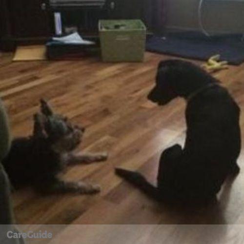 Pet Care Provider Candice B's Profile Picture