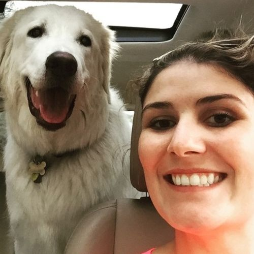 Pet Care Job Ashleigh Dixon's Profile Picture