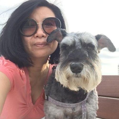 Pet Care Provider Connie Dang's Profile Picture