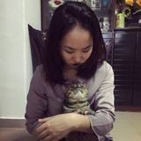 Cat-lover available for cat-sitting immediately
