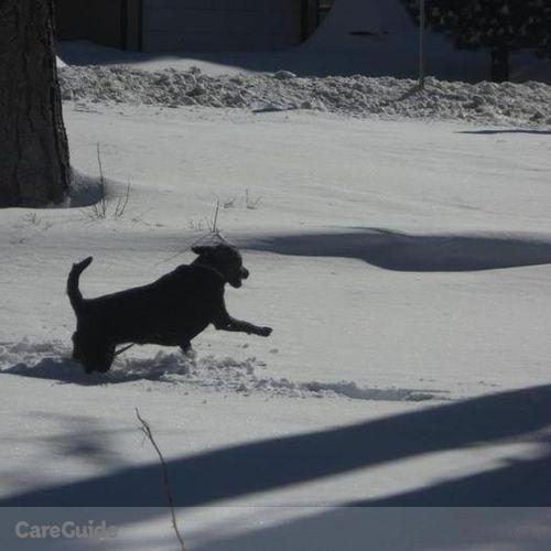 Pet Care Provider Jacob D's Profile Picture