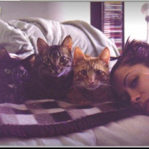 Pet Care Provider Helene Burnett Gallery Image 1