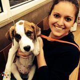 Dog Walker, Pet Sitter in Northport