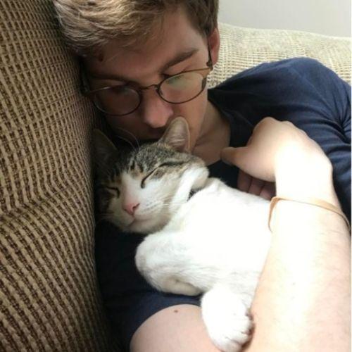 Pet Care Provider Ryan K's Profile Picture