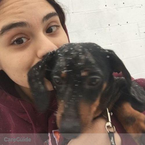 Pet Care Provider Andrea P's Profile Picture