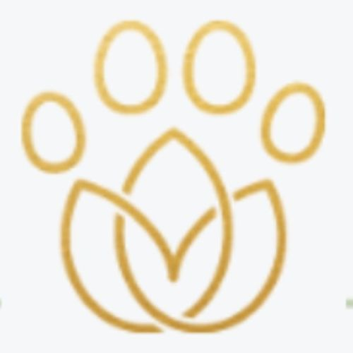 Pet Care Provider Jorian T's Profile Picture